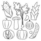 Vegetable Set Black Icon Collection Vector Royalty Free Stock Images