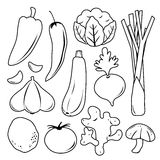 Vegetable Set Black Icon Collection Vector Royalty Free Stock Photography