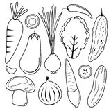 Vegetable Set Black Icon Collection Vector Royalty Free Stock Photo