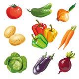 Vegetable set cartoon hand drawn collection. Stock Photos
