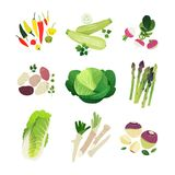 Clip art vegetables set vector illustration