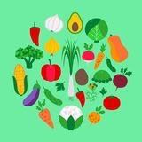 Vegetable set on green Stock Images