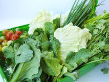 Vegetable set for healthy diet food. Stock Images