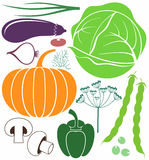Vegetable. Set Stock Images