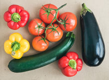 Vegetable set: ripe tomatoes, paprika, zuccini and an aggplant Royalty Free Stock Images