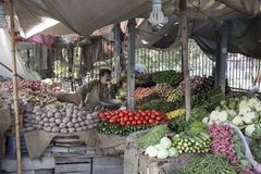 Vegetable Shop In Lahore pakistan. Vegetable Shop In Lahore Punjab pakistan ,Vegetable market Stock Images