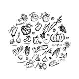 Vegetable sketch frame for your design Stock Photo