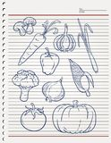 Vegetable sketch or ingredient set. PRINT DOODLE VECTOR OR element Royalty Free Stock Photography