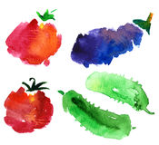 Vegetable sketches Royalty Free Stock Image