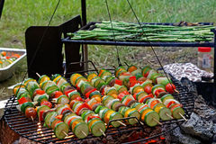 Vegetable Skewers on Outdoor Grill Royalty Free Stock Photo