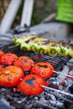 Vegetable Skewers. Tomatoes and Green Chili Peppers royalty free stock images