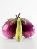 Vegetable. Some fresh vegetable from the garden Stock Images