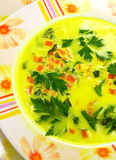 Vegetable soup. Vegetable yellow soup with carrots Royalty Free Stock Image