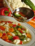 "Vegetable soup. Vegetable ""minestrone"" soup with fresh veggies in the background stock image"