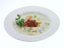 Vegetable Soup; 2 of 5. Vegetable soup with white background Stock Image