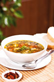 Vegetable soup. A delicious vegetable soup is ready to eat royalty free stock photos