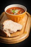 Vegetable soup bowl Stock Photography