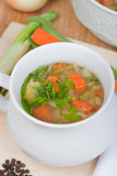Vegetable soup with carrots, onion, fresh spice, lettuce Royalty Free Stock Image