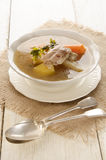 Vegetable soup with chicken meat Royalty Free Stock Image