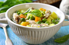 Vegetable soup with chicken and vermicelli. Royalty Free Stock Photo