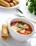 Vegetable soup with farfalia. Stock Photos