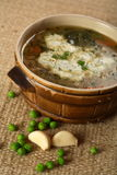 Vegetable soup with liver Royalty Free Stock Photography