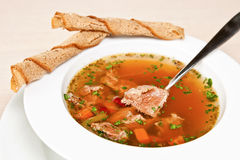 Vegetable soup with meat Royalty Free Stock Photography