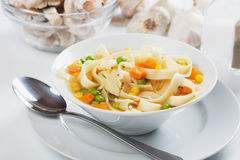 Vegetable soup with noodles Royalty Free Stock Photography