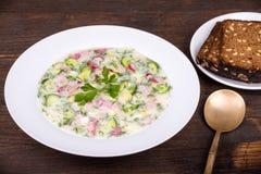 Vegetable soup ( okroshka ) Royalty Free Stock Images