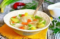 Vegetable soup with pelmeni. Stock Image