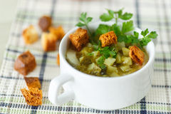 Vegetable soup with pickled cucumbers Royalty Free Stock Photos