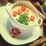 Vegetable soup with pieces of toasted bread and parsley. Stock Images