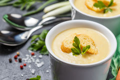 Vegetable soup puree stock image