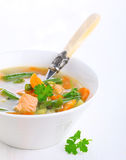 Vegetable soup with salmon Royalty Free Stock Image