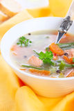 Vegetable soup with salmon Royalty Free Stock Photos