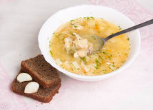 Vegetable soup with sauerkraut , chicken Stock Images