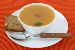 Vegetable soup with toasts Royalty Free Stock Photos