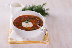 Vegetable soup with tomatoes Royalty Free Stock Images