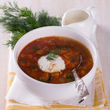 Vegetable soup with tomatoes Royalty Free Stock Photography