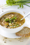 Vegetable soup in white bowl royalty free stock photo