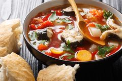 Free Vegetable Soup With Eel Fish And Tomatoes Closeup In A Bowl. Horizontal Stock Photography - 154292492