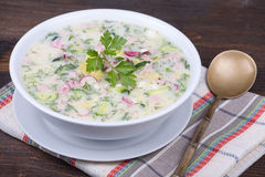 Vegetable soup on yogurt,  sour-milk base -  okroshka Royalty Free Stock Photo