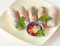 Vegetable spring rolls. On the dish with chili soy sauce royalty free stock images