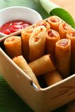 Vegetable spring rolls. Delicious fried vegetable spring rolls royalty free stock photo