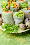 Vegetable spring rolls Royalty Free Stock Photos