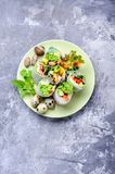 Vegetable spring rolls Royalty Free Stock Images