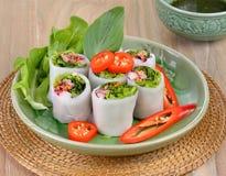 Vegetable spring rolls Stock Photos