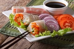 Vegetable spring rolls on a plate close-up. horizontal Royalty Free Stock Image