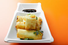 Vegetable spring rolls in a plate Royalty Free Stock Photography