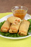 Vegetable spring rolls with plum sauce Royalty Free Stock Image